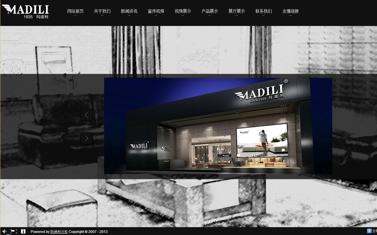玛迪利网站建设项目
